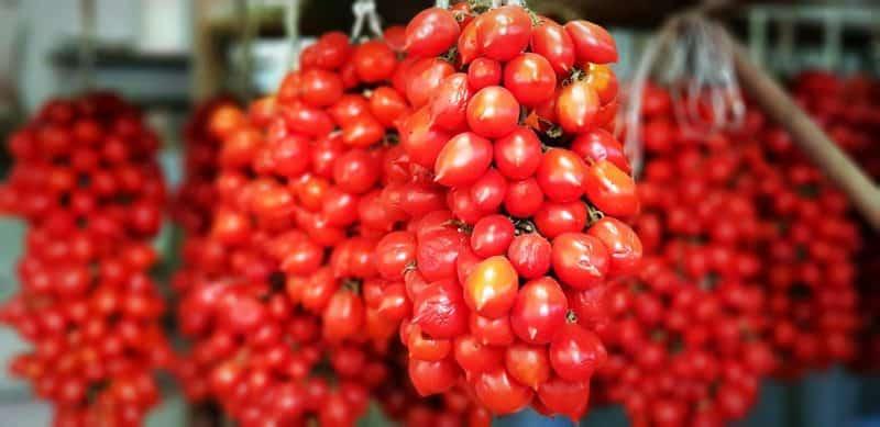 agricoltura eroica pomodorini del piennolo